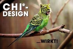 CHI-Design-macht-Experten